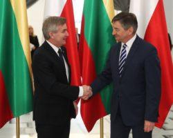 Spotkanie z marszałka Sejmu przewodniczącym Seimasu Republiki Litewskiej