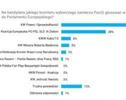 Ponad 43 proc. badanych chce zagłosować na PiS w wyborach do europarlamentu