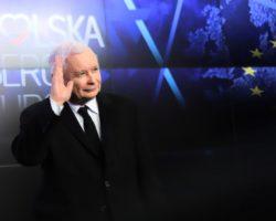 PiS wygrał wybory do europarlamentu. Na Podkarpaciu z ponad 65-proc. poparciem